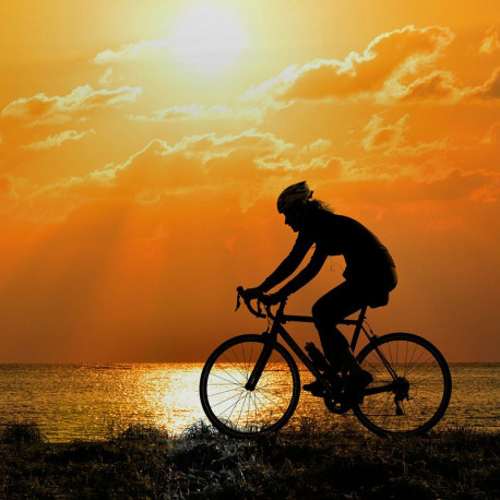 Sezione Bici