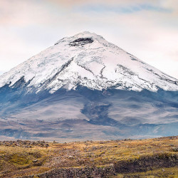 Tour Ecuador e Galapagos